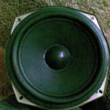 Difuzor bass 10 - Difuzoare, 41-80 W