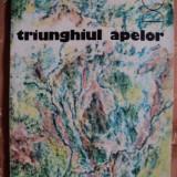 TRIUNGHIUL APELOR - LUCIAN ZATTI - Carte educativa