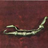 Ilustrata Complexul Muzeal Vrancea, fibula dacica Clipicesti - Carti Postale Romania dupa 1918
