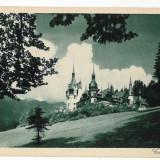 2349 - SINAIA - Castelul PELES - old postcard - unused