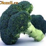 Seminte Broccoli Waltham