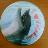 Insigna we love dolphins