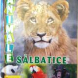 ANIMALE SALBATICE - Carte educativa