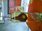 Sticla cu tuica cu para in sticla sau scarita de lemn foto