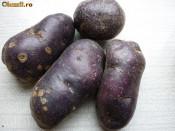 Vand cartofi mov, penru samanta foto