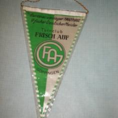 115 Fanion - FAG GOPPINGEN ( Germania)(handbal) - Fanion handbal