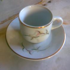 Set 6 cesti micute penru cafea, ceai sau tuica, APULUM, NOU