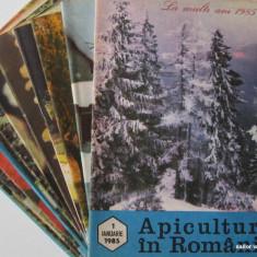 APICULTURA IN ROMANIA, colectie completa pe anul 1985 (stuparit, albinelor, stuparului, albinarit) 8 lei/revista