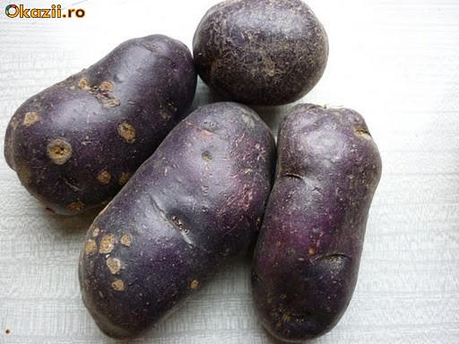 Vand cartofi mov, penru samanta foto mare