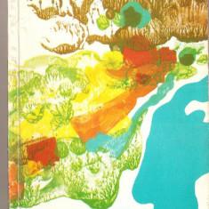 (C1484) PE FIRUL DUNARII, GHID, TEXT : MIHAIL MARINESCU, ILUSTRATII : NICHI POPESCU, SCHITE SI HARTI : V. MARINACHE, EDITURA MERIDIANE, 1968 - Harta Topografica