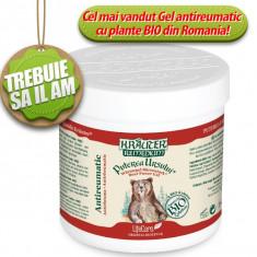 Remediu din plante - Puterea Ursului(250ml) Gel antireumatic cu plante BIO Krauter