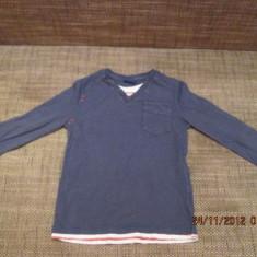 Bluza baieti 5-6 ani 116 cm Cherokee, Culoare: Albastru, Albastru