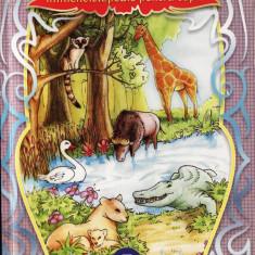 ANIMALE SALBATICE - MINIENCICLOPEDIE PENTRU COPII - Carte educativa