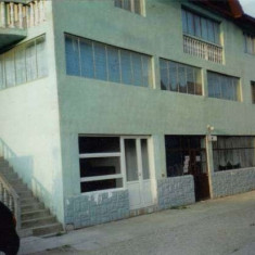 Vila Moldova-Noua - Casa de vanzare
