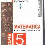 Manual Clasa a V-a - MATEMATICA CULEGERE DE PROBLEME