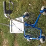 carucior invalizi