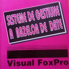 SISTEME DE GESTIUNE A BAZELOR DE DATE VISUAL FOX PRO - Tamas Ilie, Popa Gheorghe