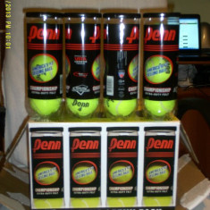Mingi tenis Penn-Head championship extra duty flet import USA 100 % originale - Minge tenis de camp