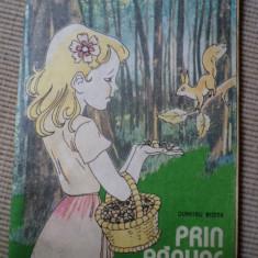 DUMITRU RISTEA PRIN PADURE cateva incepute colorate - Carte de colorat