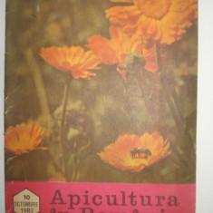 Revista/Ziar - Apicultura in Romania nr. 10 din octombrie 1983