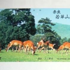 Cartela telefonica Japonia - NATURA, FAUNA, ANIMALE SALBATICE, CERB SI CAPRIOARA - 2+1 gratis toate licitatiile - RBK2352 - Cartela telefonica straina