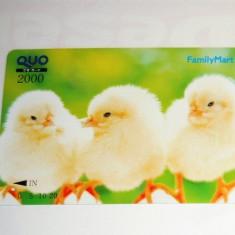 Cartela / Card Japonia - NATURA, ANIMALE - PUI -   2+1 gratis toate licitatiile - RBK2394