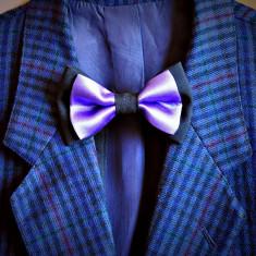 Cravata Barbati - Papioane Papion + Batista Batiste de buzunar [Elegant Casual Fashion Trend - Cravate Unisex Club 2013][BowTie]
