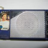 Radio TEHNOTON TERA - Aparat radio, Analog