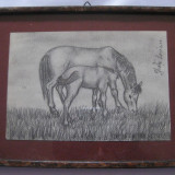 DESEN CREION SEMNAT GHITA - Pictor roman, An: 1978, Animale, Carbune, Realism