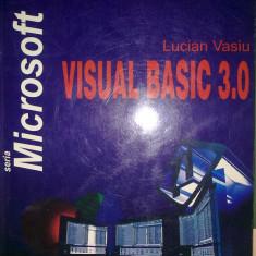 Lucian Vasiu - Visual basic 3.0