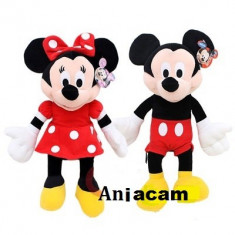 Plus Minnie si Mickey - Mickey Mouse si Minie