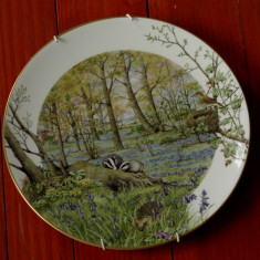 Farfurie deosebita portelan fin de colectie - The Woodlands in April by Peter Banett - Royal Worcester Porcelain - Made in England 1979 !!!, Farfurii