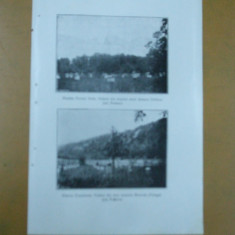 Prahova Stupina fermei Voila Vedere din stupina mica dinspre Doftana Prahova Stupina Cosereanu vedere dinspre Rotunda Telega Prahova - Carte Postala Muntenia dupa 1918