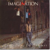 Muzica Dance, VINIL - Imagination - Last days of summer (1985, R&B Rec.) Disc vinil single 7""