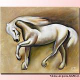 Tablou cal, ulei pe panza 60x50cm - Beauty LIVRARE GRATUITA 24-48h - Pictor roman, Animale, Altul
