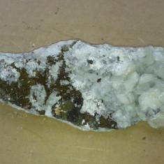 Fosila roca, Naturala - FLOARE DE MINA DE COLECTIE cristal forma naturala reducere