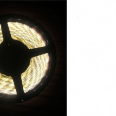 BANDA CU LEDURI 3528 SMD 60 LED/METRU