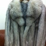 Vand haine de blana vulpe argintie