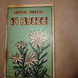 In Bucegi/ an 1928-Nestor Urechia