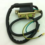 Bobina inductie ATV 110