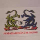 CCO - CALENDAR DE COLECTIE - TEMATICA CHINA - 2009 - Calendar colectie