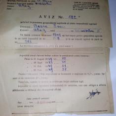Document R.P.R. aviz privind impunerea gospodariei agicole si plata impozitului pe anul 1949, Romania 1900 - 1950