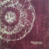 Carte hobby - IMPLETITURI CU ANDRELE - ELISABETA IOSIVONI