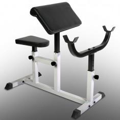 Banca de exercitii - Banca pentru facut bicepsi, pentru amatori si adolescenti