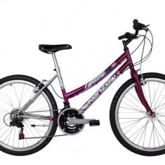 Mountain Bike - Bicicleta Kenzel Prime DX50