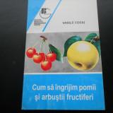 Arbusti fructiferi - CUM SA INGRIJIM POMII SI ARBUSTII FRUCTIFERI - VASILE COCIU