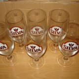 Set 6 pahare Noi de Bere SILVA 0, 3