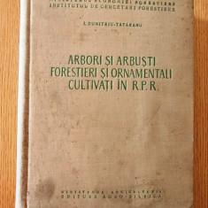ARBORI SI ARBUSTI FORESTIERI SI ORNAMENTALI CULTIVATI IN RPR- DUMITRU TATARANU - Carti Agronomie