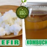Produs Naturist - Kefir si Kombucha - pachet complet BioActiv