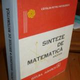Catalin Petru Nicolescu - SINTEZE DE MATEMATICA – APLICATII *** - Culegere Matematica